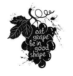 Graphic Of Grape Branch Silhouette vector image vector image