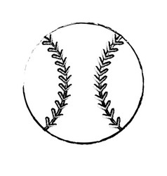 baseball sport ball image sketch vector image vector image