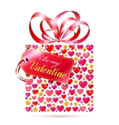 Valentines Day Gift vector image vector image