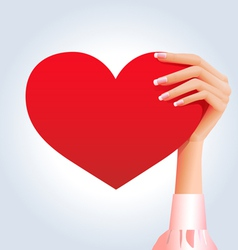Female hand holding deep red heart vector image