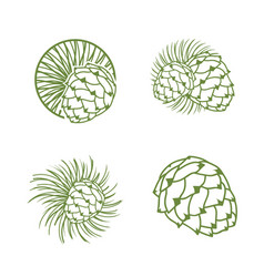 Fir cone logo set vector