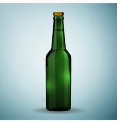 Glass beer green bottle icon isolated on blue vector image