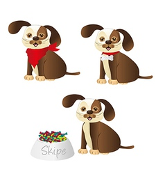 dog with different accessories isolated on white b vector image vector image