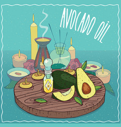 Avocado oil used for aromatherapy vector