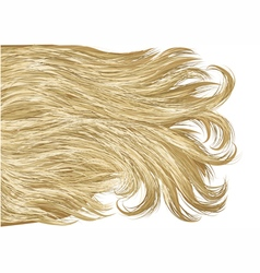 Blonde hair vector