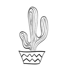 Cactus with pot icon plant design vector