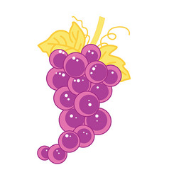 fruit grape isolated vector image