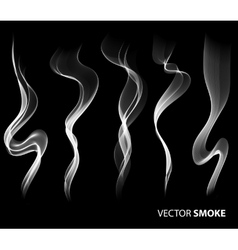 Set of realistic smoke on black background vector image