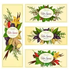 Spice herb and condiment banners for food design vector