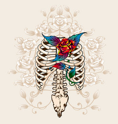 spine bones and roses vector image