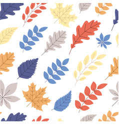 white autumn background with color leaves vector image