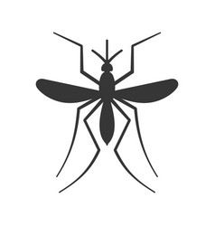 mosquito icon on white background vector image vector image
