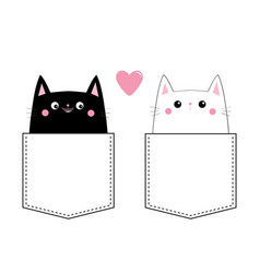 black white cat love couple in the pocket pink vector image