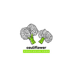 cauliflower vegatarian food logo template vector image