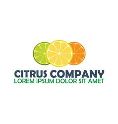 citrus logo company lemon logo vector image