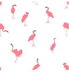 colorful pink flamingo isolated on white vector image
