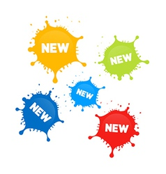 Colorful stains splashes with new title vector