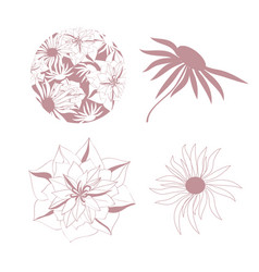Different flower set vector
