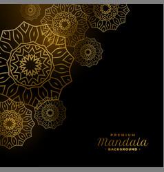Golden mandala shapes royal dark background design vector