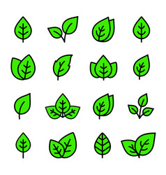 Linear eco set green leaf and branch icons vector