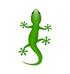lizard in green design vector image