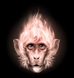 Monkey fire head vector image