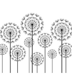 black stylized dandelion on white background vector image vector image