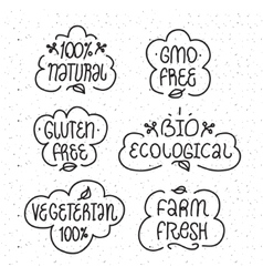 Gmo and gluten free bio ecological natural vector image