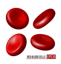 red blood cells set erythrocytes in various vector image