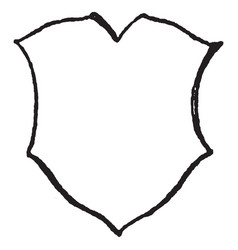 Renaissance shield shape of a shield or vector