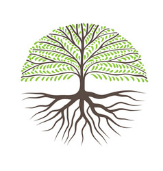 round tree with roots vector image