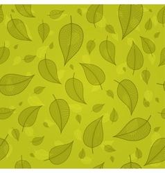 Skeletonized leaves on a green background vector