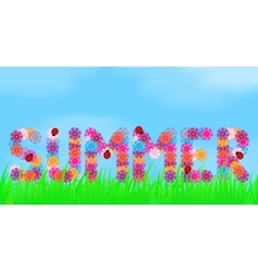 Title of summer flowers vector
