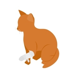 Cat with broken paw icon isometric 3d style vector image vector image