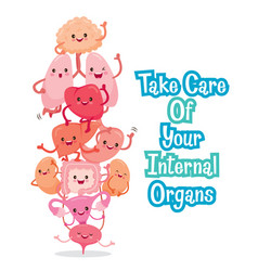 human internal organs cartoon characters funny vector image vector image
