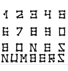 Bones numbers white vector image