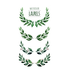 Watercolor laurels vector image