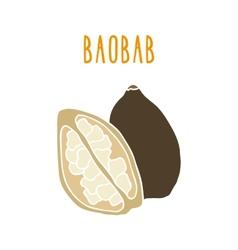 Baobab superfood vector