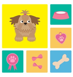 Dog Shih Tzu and dog stuff bow bone food vector