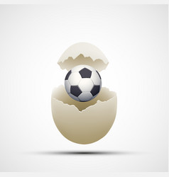 soccer ball in a chicken egg vector image