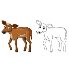 Animal outline for little cow vector