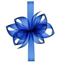 blue transparent bow and ribbon top view close up vector image