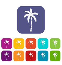 palm tree icons set vector image vector image