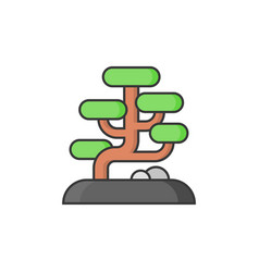 bonsai icon vector image