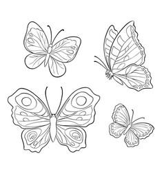 Butterflies in contours vector