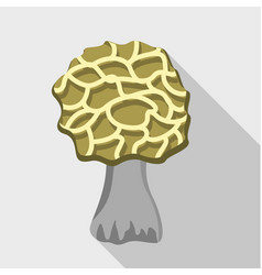 morel icon flat style vector image