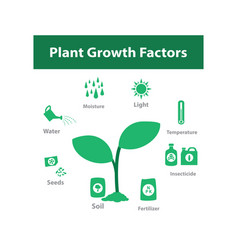 plant growth factor infographic in monochrome vector image