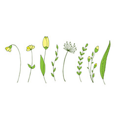 Set with spring branches and flowers isolated vector