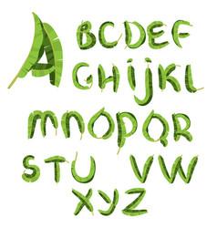 Tropical alphabet made of banana palm leaves vector