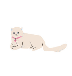 white british cat lying in beautiful pose vector image